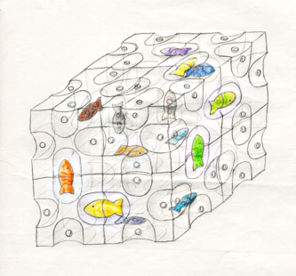 Toy idea-fish cube drawing